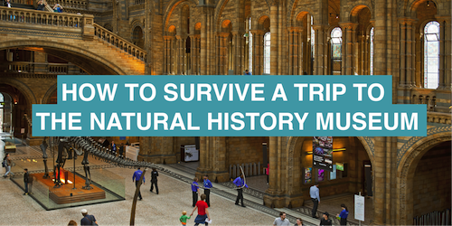 How to survive a trip to the Natural History Museum