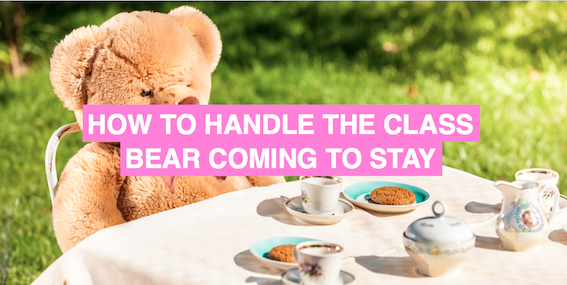 How to handle the class bear coming to stay