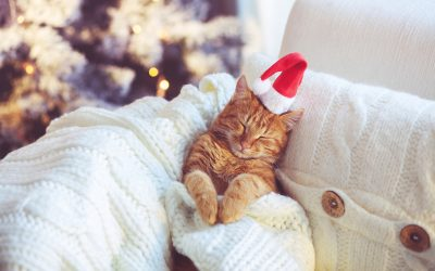 10 ways your baby can get you out of absolutely anything this Christmas